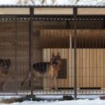 Изготовление Вольеров для собак и других животных., Ставрополь